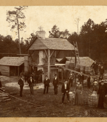 Turpentine Still in Thomas County c.1905