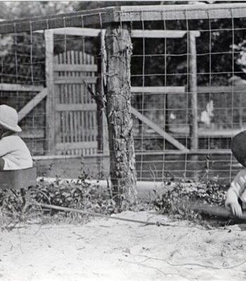 Chinquapin Plantation c.1915