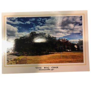 Big Oak Postcard